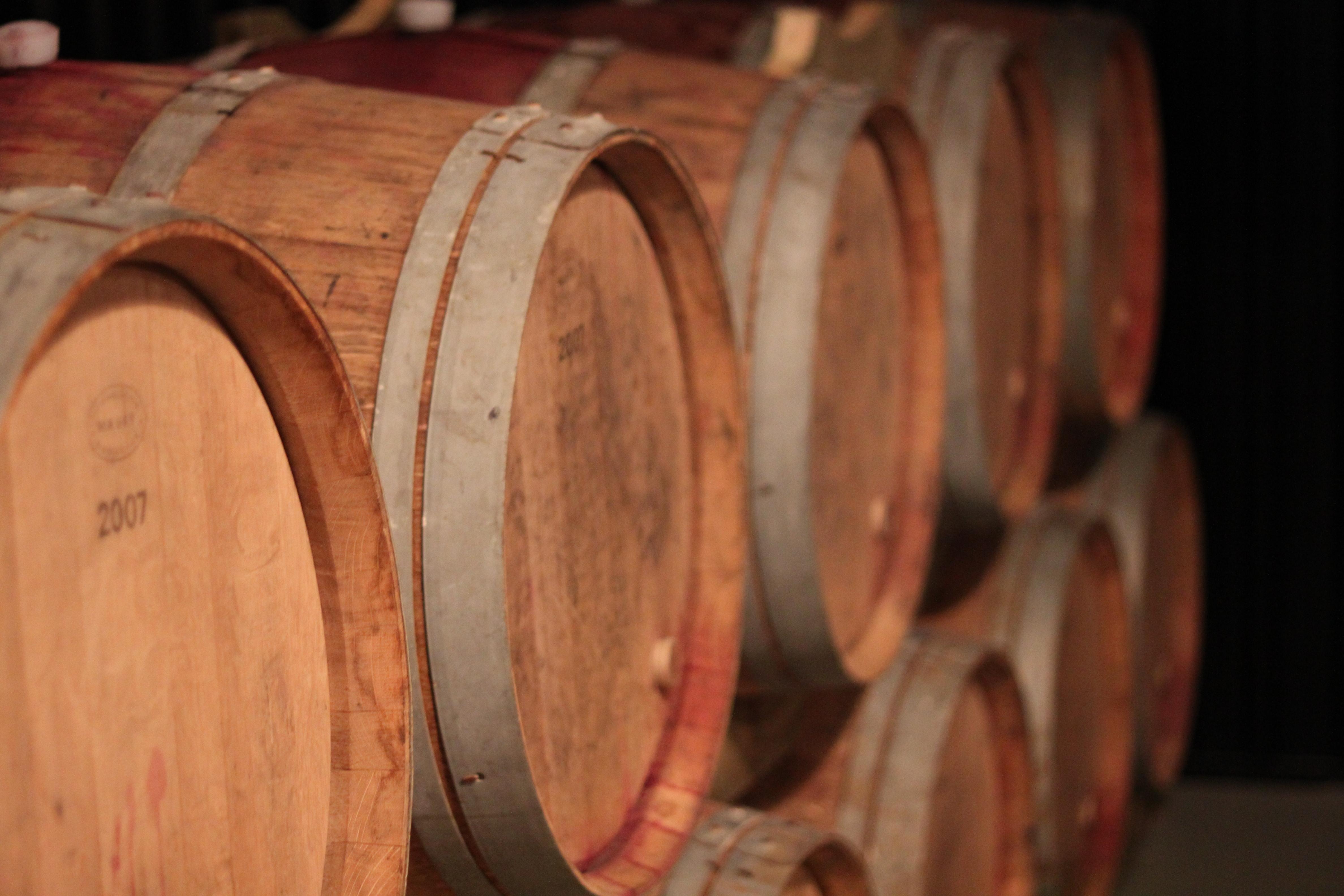 24 Wine Fest Cellar